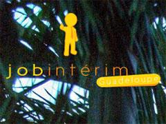 www.job-interim-guadeloupe.fr